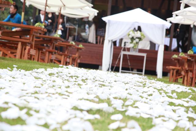 wedding_report_001